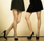 stock photo of black heel  - Female fashion - JPG