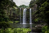 stock photo of ponds  - A scenic view of Whangarei waterfall and pond underneath - JPG