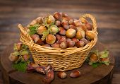 stock photo of cobnuts  - Fresh hazelnuts in the basket on the table - JPG