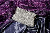 picture of clutch  - white clutch inlaid diamonds on silk background - JPG