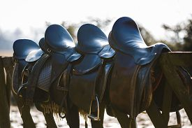 stock photo of western saddle  - A saddles laying on the rustic fence in warm sunlight - JPG