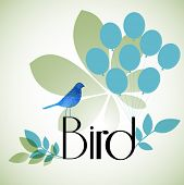 pic of robin bird  - bird with balloons leaves  - JPG