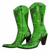 image of lady boots  - Ladies floral green lime genuine leather boots - JPG