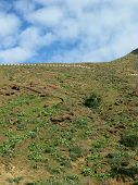 image of canary-islands  - The highway  between Betancuria and Pajares on the Canary Island Fuerteventura - JPG