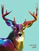Постер, плакат: Deer polygonal illustration Vector eps 10