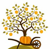 stock photo of hand-barrow  - vector apple tree and hand barrow with pumpkin isolated on white background - JPG