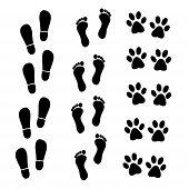 foto of human toe  - Vector set of black marks human and animal - JPG