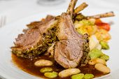 foto of lamb chops  - Fresh lamb chops on plate with gravy and vegetables - JPG