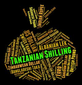 image of shilling  - Tanzanian Shilling Representing Foreign Exchange And Coinage - JPG