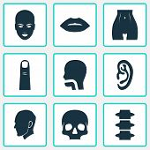 Physique Icons Set With Lip, Belly, Ear And Other Breath Elements. Isolated Vector Illustration Phys poster