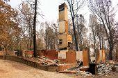 Charcoaled Landscape Including Remnants Of A Burnt Home With Just A Chimney Left Standing Destroyed  poster