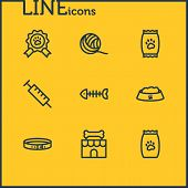 Illustration Of 9 Pet Icons Line Style. Editable Set Of Clew, Kibble, Pet Food And Other Icon Elemen poster