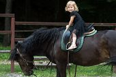 Child Sit In Rider Saddle On Animal Back. Girl Ride On Horse On Summer Day. Friend, Companion, Frien poster