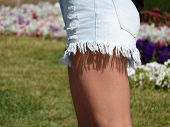 Slender Female Legs On The Background Of A Blooming Lawn. Slim Girl In Short Denim Shorts, Summer Fe poster
