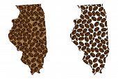 Illinois (united States Of America) -  Map Of Coffee Bean, Illinois Map Made Of Coffee Beans, poster