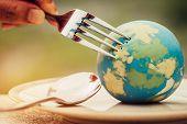 Fork Slammed On Globe Model Placed On Plate  For Serve Menu In Famous Hotel. International Cuisine I poster