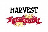 Harvest - Handdrawn Lettering Ith Autumn Harvest Symbols. Harvest Fest Poster Design. Autumn Festiva poster