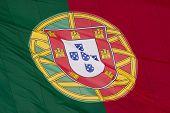 Постер, плакат: Португальский флаг