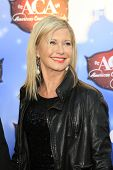 LAS VEGAS - DEC 10:  Olivia Newton-John at the 2013 American Country Awards at Mandalay Bay Events C
