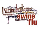 picture of swine flu  - Swine flu word cloud image with hi - JPG