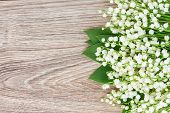 picture of lilly  - lilly of the valley posy on wooden table with copy space - JPG