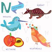 image of nightingale  - Alphabet design in a colorful style - JPG