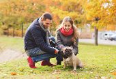 stock photo of dog park  - care - JPG