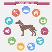 stock photo of dog-house  - Dog infographics and icon set - JPG