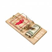 picture of trap  - Hundred Dollars Bill in Mouse Trap over white background