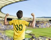 picture of arena  - Brazilian fan celebrates on the stadium - JPG