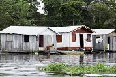 picture of social housing  - Floating Houses in Manaus - JPG