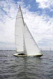 picture of sharpie  - Sharpie boat sailing on Portuguese waters on a sunny day - JPG