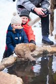 picture of macaque  - Kids at Snow monkey Japanese Macaque park looking at baby monkey playing at onsen hot springs in Nagano - JPG