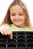 pic of germination  - Little girl planting putting seeds into germination tray  - JPG