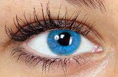 stock photo of blue eyes  - blue eye - JPG