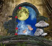 stock photo of faerys  - Secret passage series  - JPG