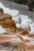 image of mammoth  - Colorful Mammoth Hot Springs cascading down its self creation of stair stepped pools at Yellowstone National Park.
