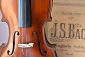 foto of violin  - German ancient violin and notes - JPG