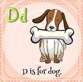 foto of letter d  - Flash card letter D is for dog - JPG
