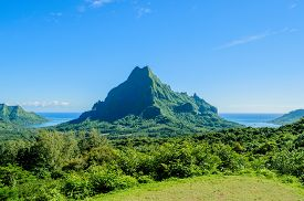 picture of french polynesia  - Overview over the green jungle on Rotui mountain with Cook - JPG