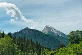 stock photo of snow capped mountains  - Vista of tree - JPG