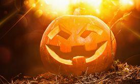 image of jack o lanterns  - Jack O Lantern halloween pumpkin at sunset - JPG