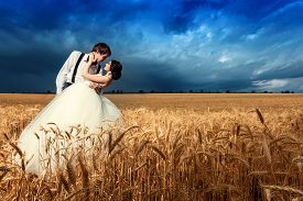 stock photo of married  - Young couple getting married in wheat field - JPG