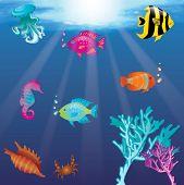 Постер, плакат: под водой