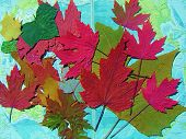 Autumn Leaves On Map poster