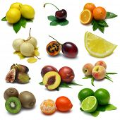 picture of tangelo  - Fruit Sampler  - JPG