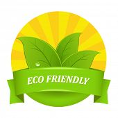 picture of environmentally friendly  - Eco Friendly Icon - JPG