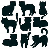 Cat. Set Of Flat Icons Of Feline Silhouettes. Vector Illustration. Kitty, Pets. Black Outlines On Wh poster
