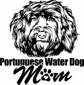Animal Dog Portuguese Water Dog 4R5Bh Mom.eps poster