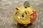 pic of shilling  - piggy bank with chinese prosperity symbol - JPG
